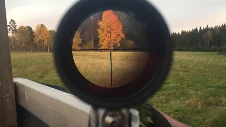 Las mejores miras telescópicas para armas